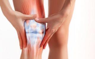Боковая связка коленного сустава