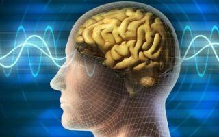 Симптомы и причины бокового амиотрофического склероза. Советы по улучшению состояния пациентов с БАС