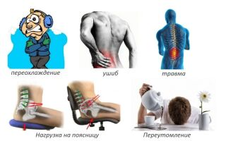 Люмбалгия поясничного отдела позвоночника: симптомы, лечение, профилактика